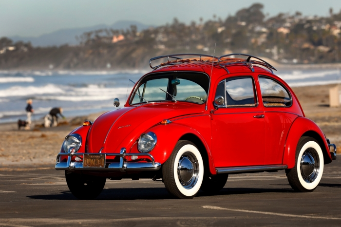 kathleen_brooks_1967_annie_beetle-small-9197